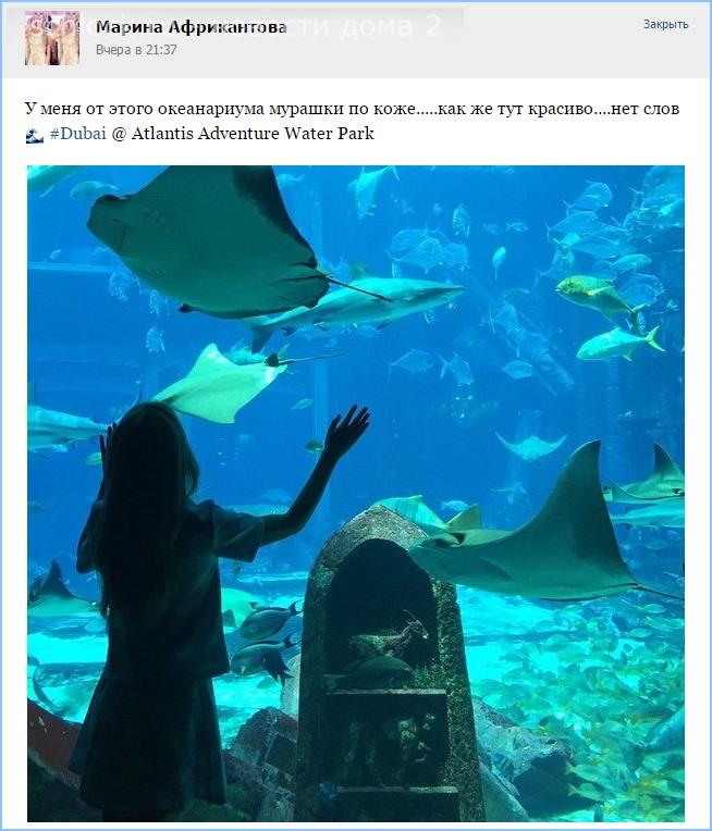 Африкантова в океанариуме