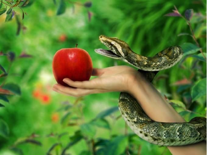 Сказки дома 2. Мудрость змеи и талеры