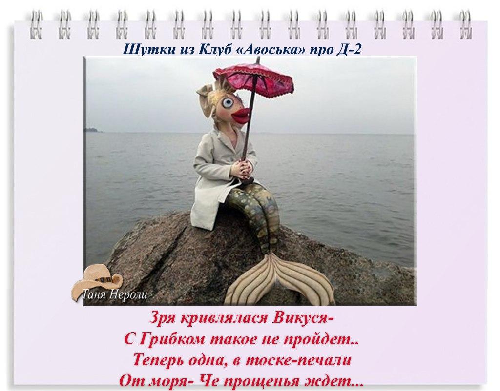 trYfyKO8BD4