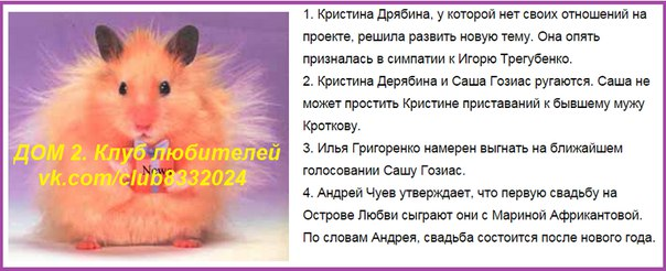 Новости кучкой на 19.11.15