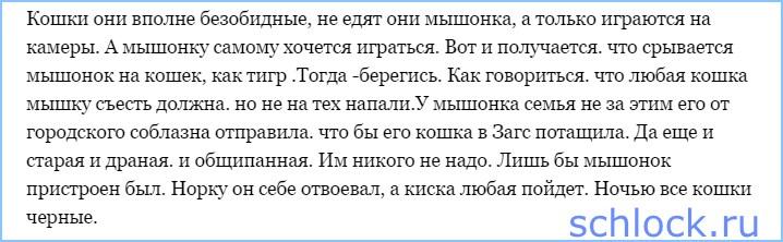 Мышонок Илья и его киски
