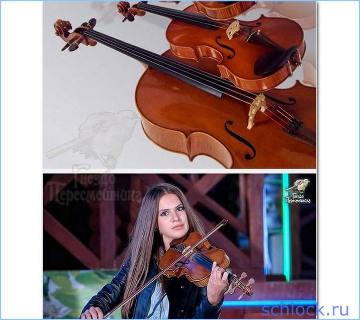 Скрипичный развод