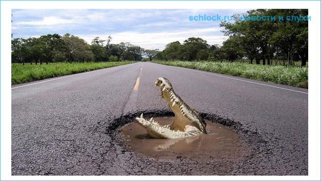 Крокодил, крокожу и буду крокодить!