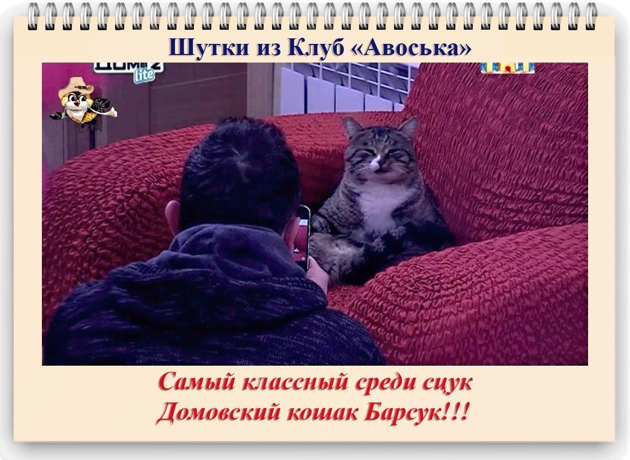_7oVS4j1SNU