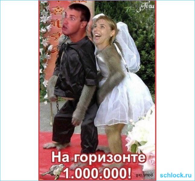 Миллион в брачной корзине