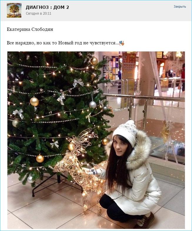 Екатерина Слободян.  Новый год не чувствуется