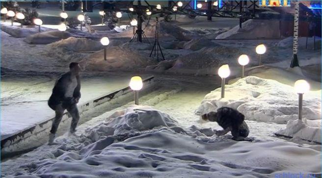 Если уже второй мужик бросает в снег…