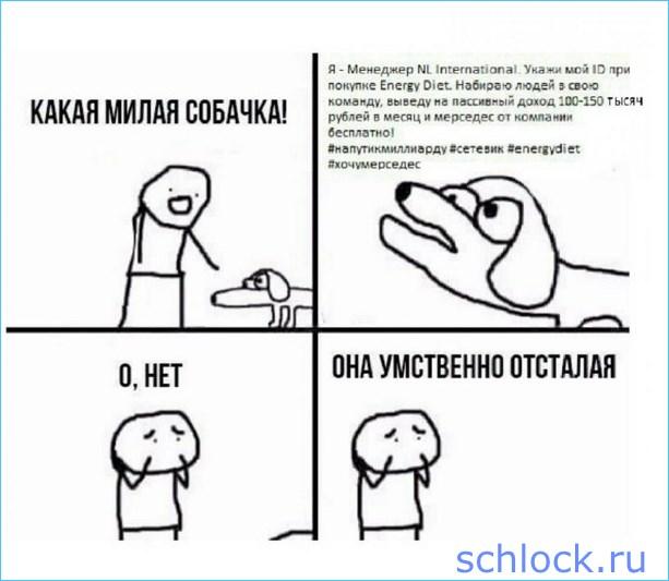 Разоблачение бизнеса Гобозовых продолжается!