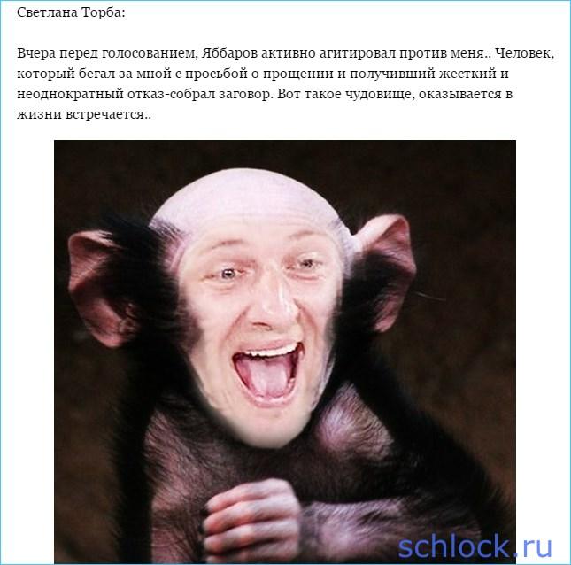 Яббаров отомстил Светлане Торбе?