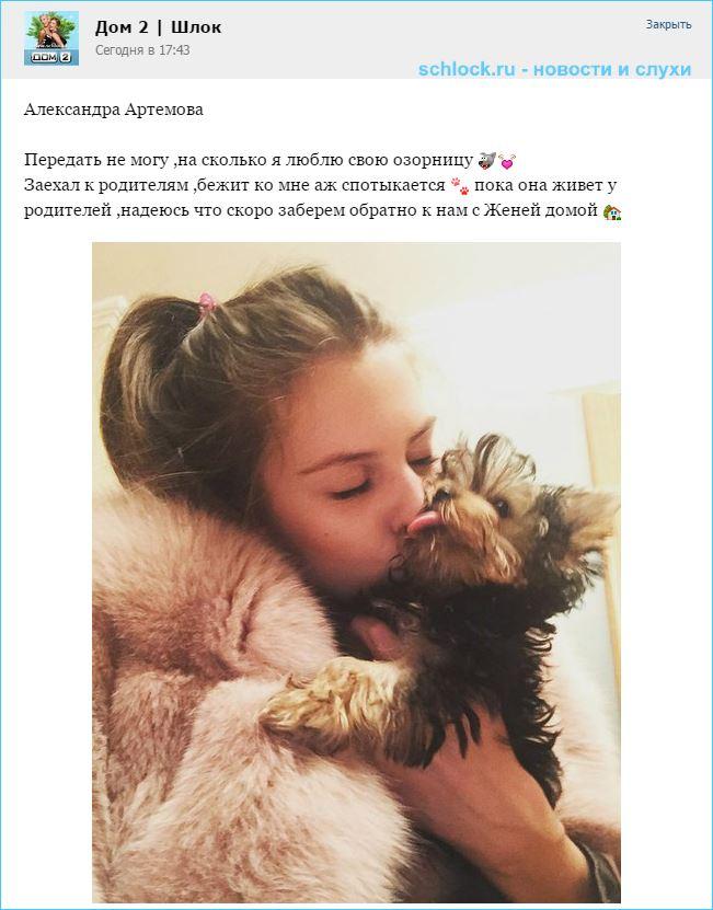 Артемова любит, но ухаживать пока не готова