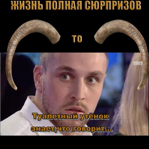 9ZU_DrlOYPc