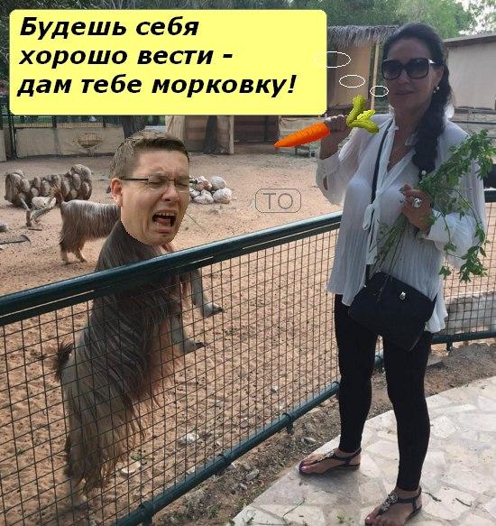 iu51khYec_I
