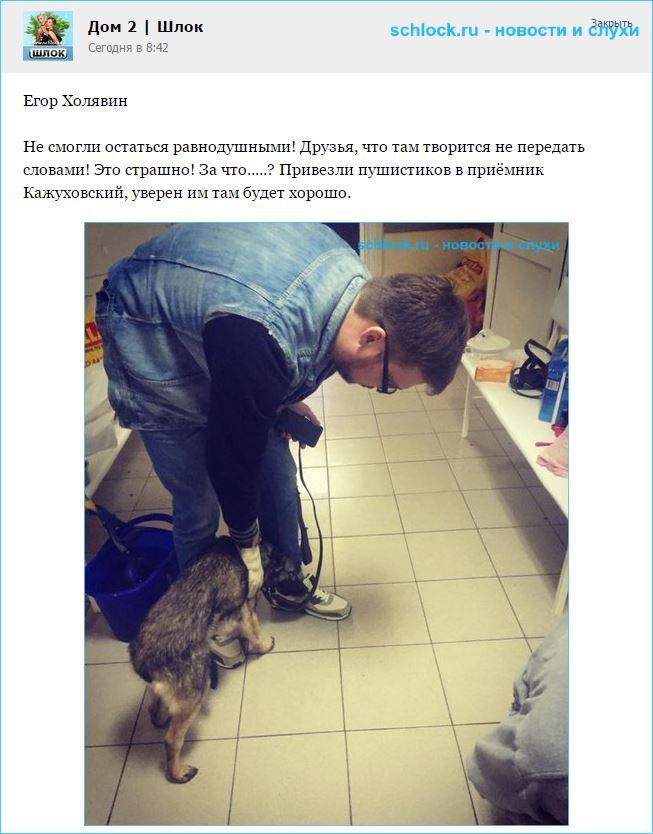 Егор Холявин помогает животным