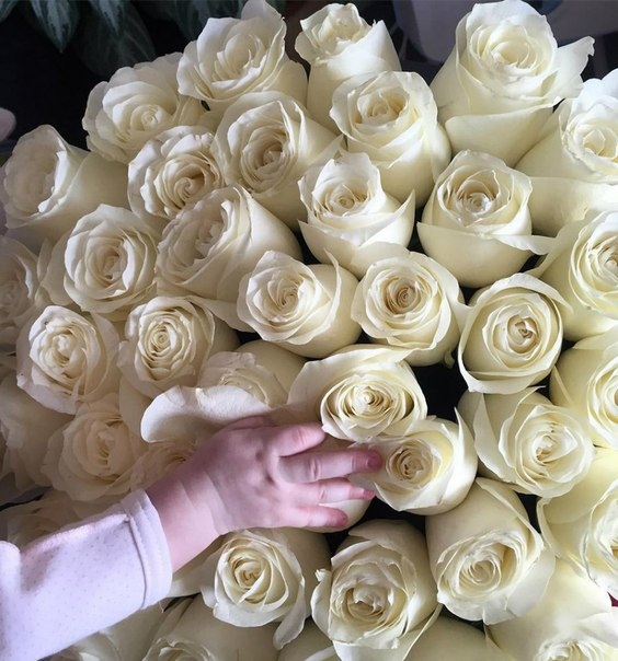 Муж Бородиной поздравил с днем рождения дочери