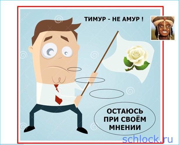Тимур - не Амур!