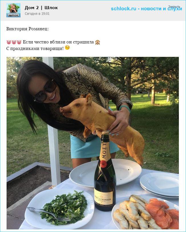 Романец и свинья