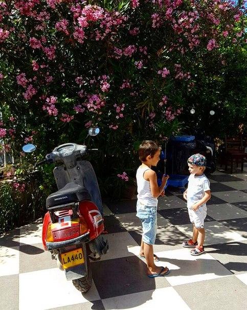Домовские детишки (10 июня)