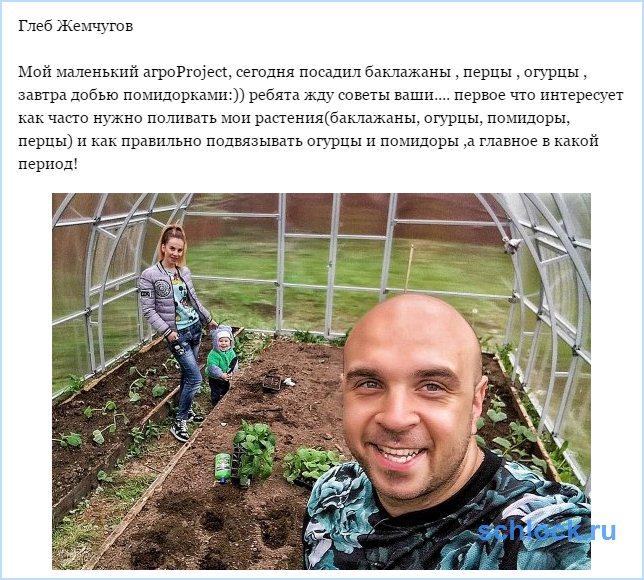 Маленький агроProject Жемчугова