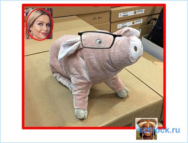 Тряпичный свин и барыня на вате