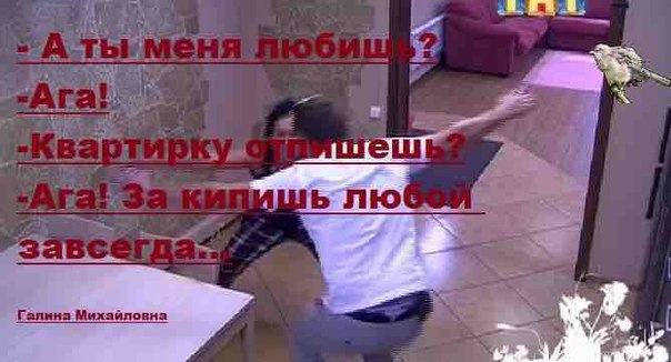 zFuGv0il_3U