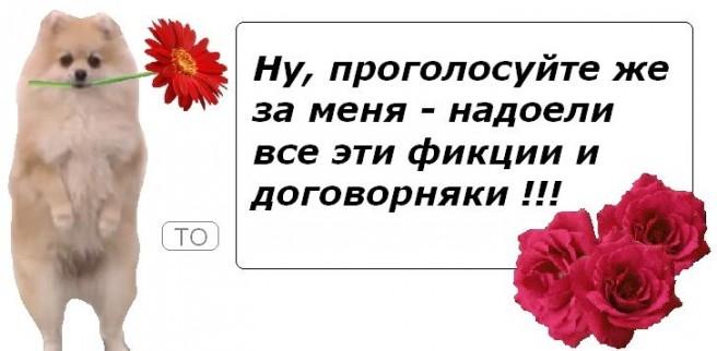 crvTHjy5Kjo
