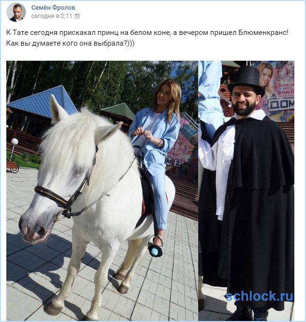 Блюменкранс или конь?