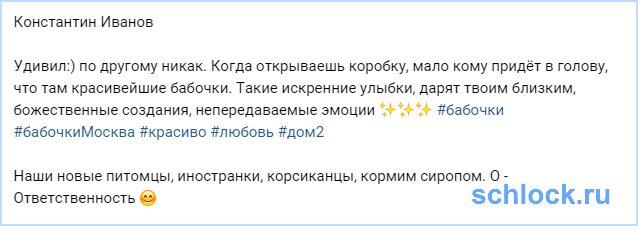 Новые питомцы Иванова и Гозиас