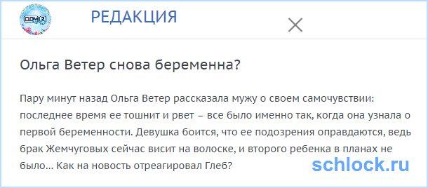 Ольга Ветер снова беременна?