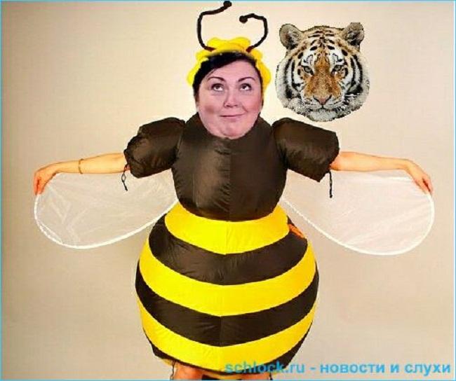 Сказка.  Пчелка Майя, мед-то где?