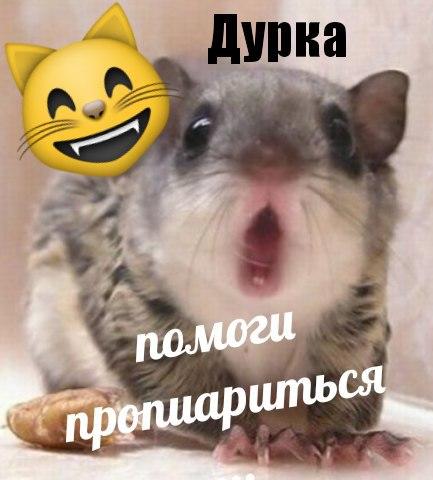 qfoetbfkwie