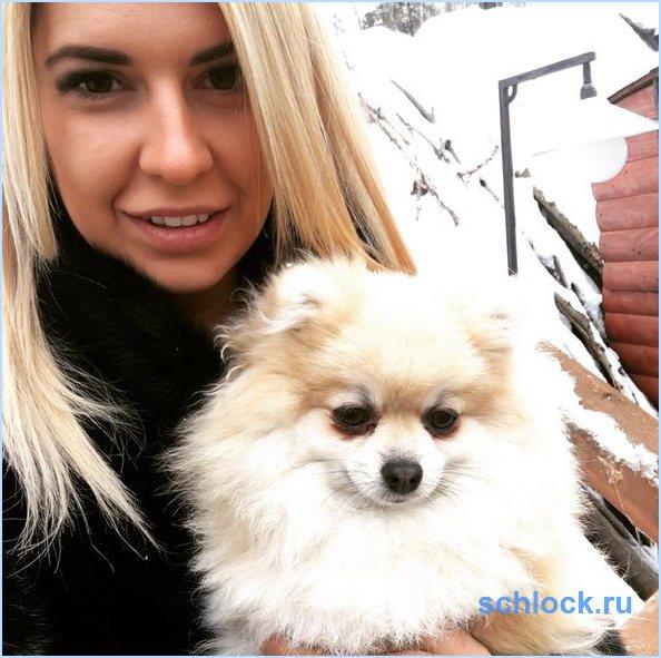 Донцова и собаки!
