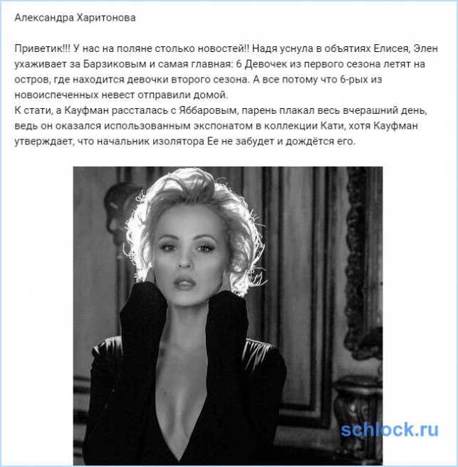 Новости от Харитоновой (4 ноября)