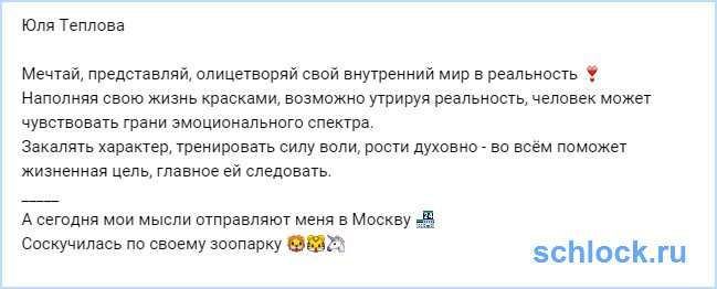 Мысли Теплову отправляют в Москву