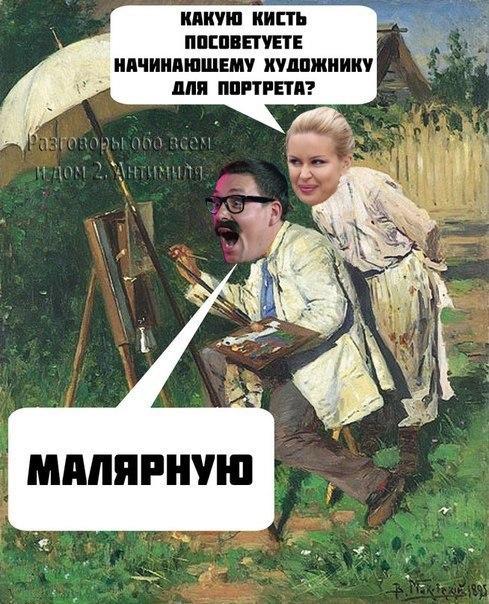 vydoilseqv4