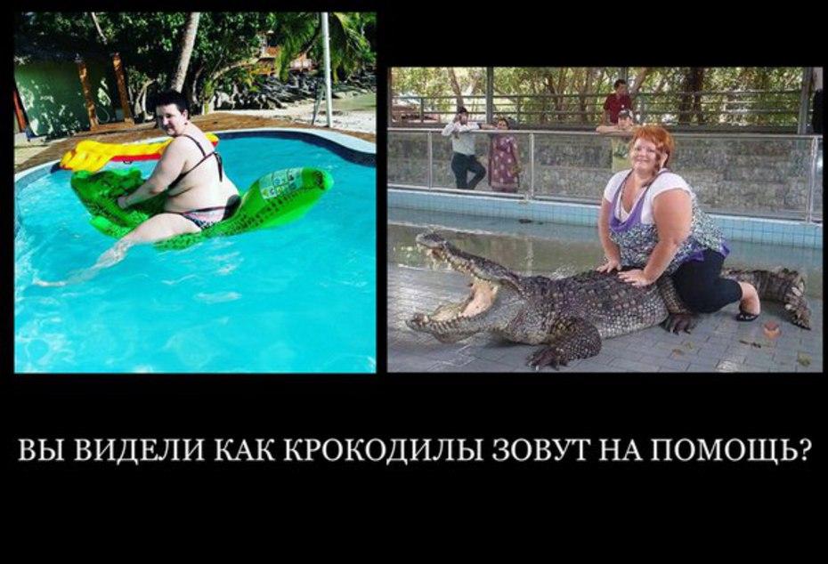 http://www.schlock.ru/wp-content/uploads/2017/04/yYeXtWvD78Y.jpg